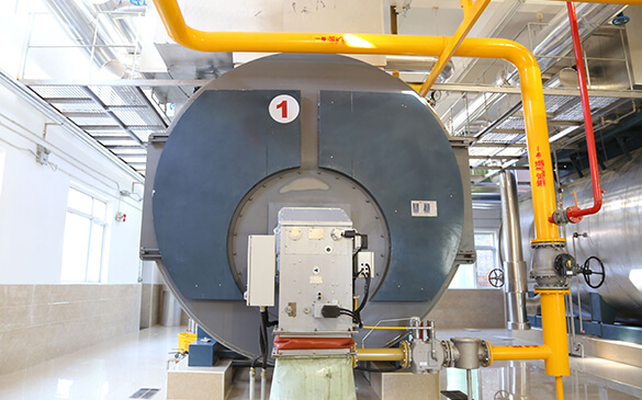 Gas Condensing Steam Boilers Selection For Steam Supply
